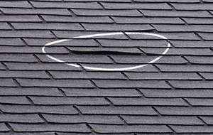 roof inspections west palm beach fl